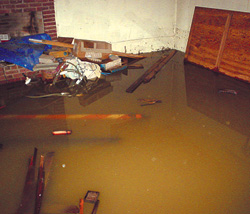 Test Your Sump Pump or Risk a Flood